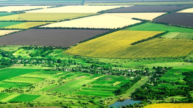 Комиссия по земельной реформе: новый комитет появится в Казахстане