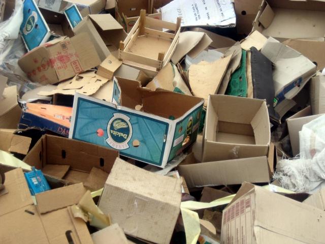 Десять миллиардов тенге направят на переработку мусора в Казахстане