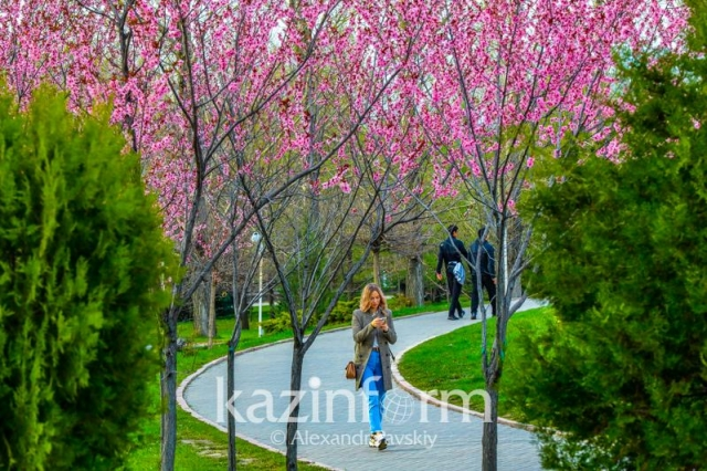 Какой будет погода в мае в Казахстане