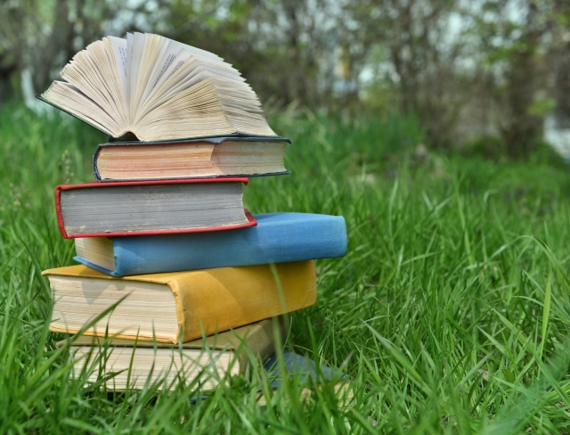 Летние школы организуют в Актюбинской области