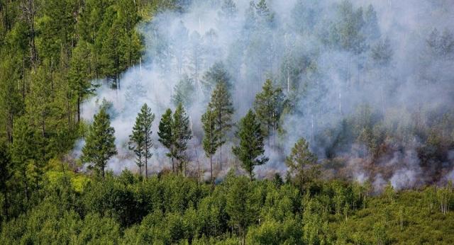 Смог от пожаров в России накрыл три региона в Казахстане