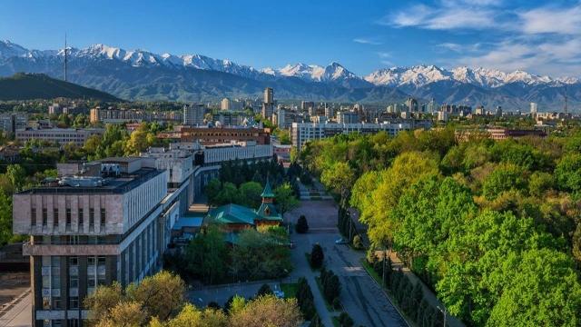 Каждое дерево в Алматы получит паспорт
