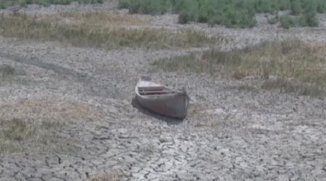 ООН: 70 стран регулярно страдают от засухи