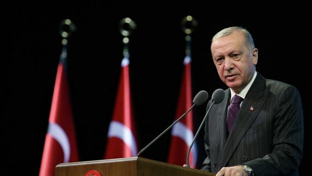 Эрдоган заявил о задержании подозреваемого в поджоге леса в Турции