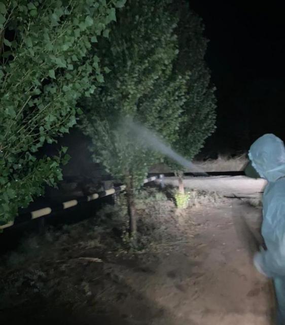 35 тыс. гектар сельхозугодий обработано против гусениц в Актюбинской области