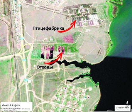 Тысячи тонн отходов птицефабрики могут отравить Актюбинское море