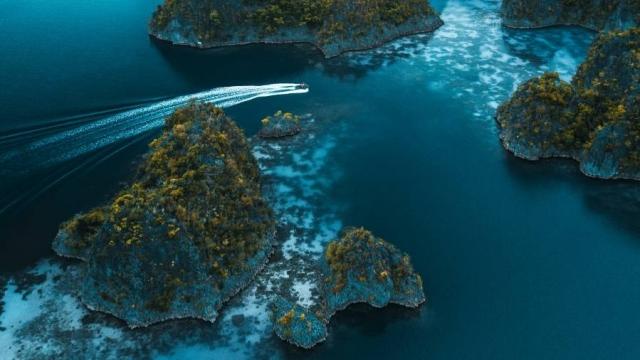 Латиноамериканские страны призвали Лондон отдать Фолклендские острова Аргентине