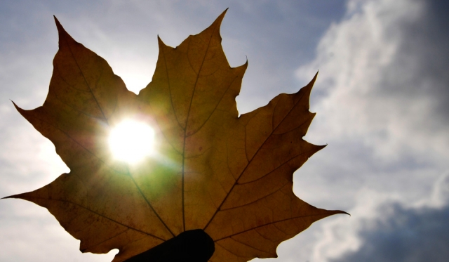 День осеннего равноденствия в 2021 году - несколько фактов