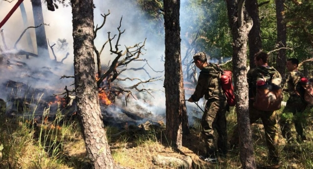 Наказание за экологические нарушения ужесточат в Казахстане