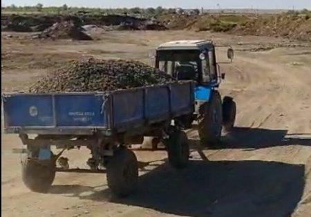 Факт нового сброса отходов актюбинской птицефабрики подтвердился