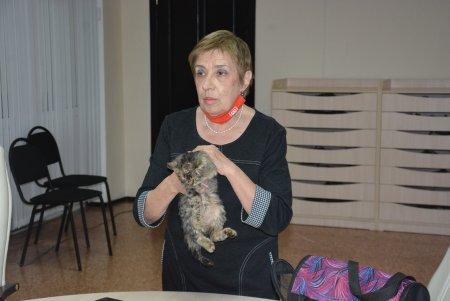 13 000 кошек и собак уничтожены: зоозащитники требуют прекратить массовое убийство животных в Актобе